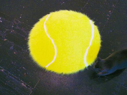 Ash Ferlito, 'Tennis', 2015