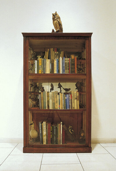 Mark Dion, 'Bookcase for the Practical Ornithologist (for Rachel Carson)', 1993-1994