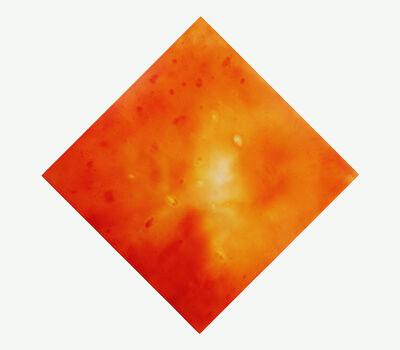 Ben Weiner, 'Orange flowers', 2016
