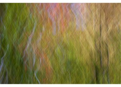 Peter Daitch, 'Vermont 63', 2015
