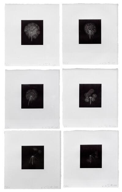 Kiki Smith, 'Dandelions Suite', 1999