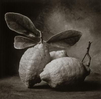 Cy DeCosse, 'Tuscan Lemons'