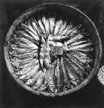 Fred Stein, 'Fish Platter (Brittany)', 1935