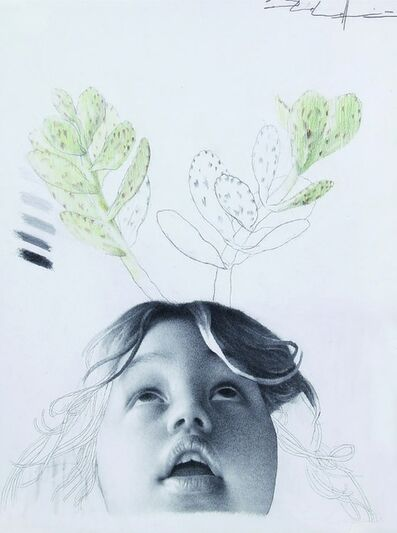 Martin Palottini, 'El dibujo no es un animal doméstico VIII', 2011