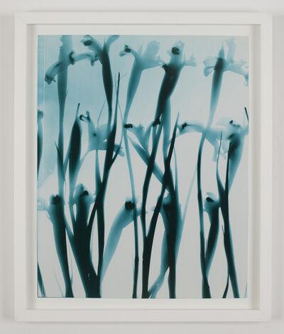 Kunié Sugiura, '(Blue Stack 2)', 2005