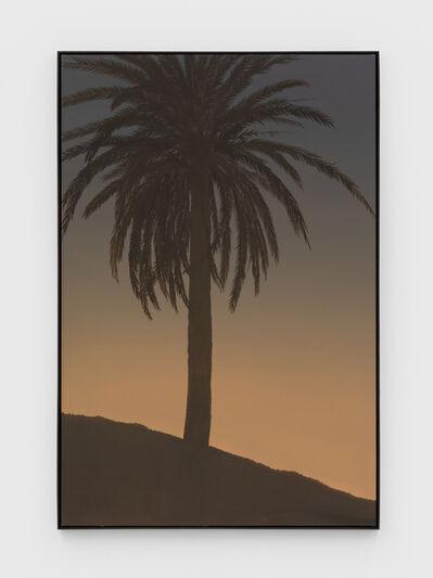 Jake Longstreth, 'Untitled (Palm 4)', 2020