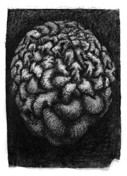 Peter Randall-Page, 'Warp and Weft IV', 2005