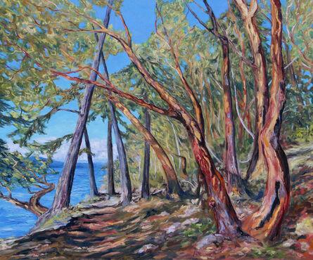 Terrill Welch, 'Saint John Point Trail', 2021