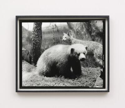 Gerard Byrne (b. 1969), 'Sixteenth beast', 2018