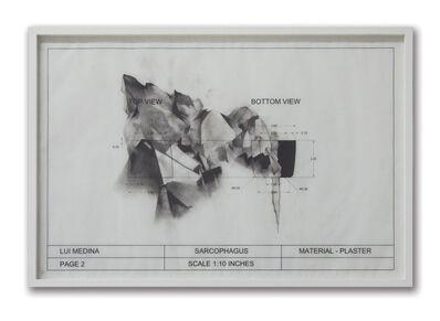 Lui Medina, 'Untitled (Natural History 6)', 2013