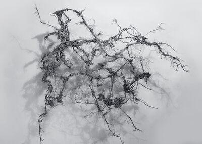 Dmitry Kawarga, 'The Title Doesn't Matter #6', 2015