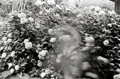 Chris Lowell, '31 Days Triptych #3 of 3', 2011