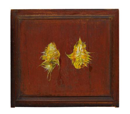 Chen Shun-Chu, 'Rejuvenation: The Filaments of Mangoes', 2013