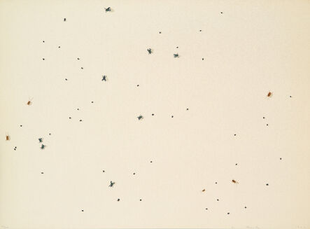 Ed Ruscha, 'Pearl Dust Combination (from Insects Portfolio)', 1972