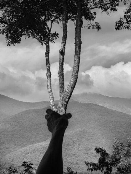 Arno Rafael Minkkinen, 'Arno Rafael Minkkinen Halfway up Mt. Mitchell, Burnsville, North Carolina', 2013