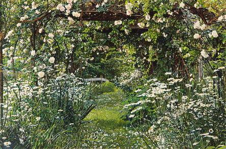 Jeffrey Vaughn, 'Thicket 35: White Flowers', 2012