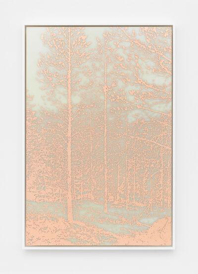James Hoff, 'Useless Landscape No. 32', 2016
