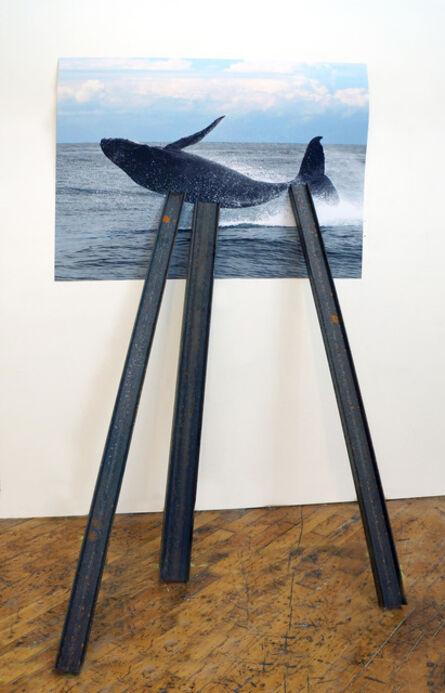 David Brooks, 'Entangled Image (Humpback whale)', 2013