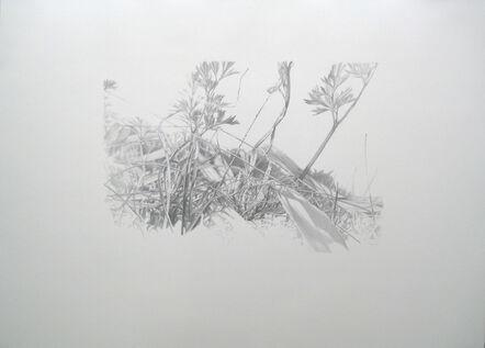 Peter Anders, 'Lieux de Mémoires, 34.000 Jahre Grasnarbe. Siedlung des Aurinacien, Schöpfung figürlicher Kunst, 31.990 v.Chr.,Hohle Fels, Blaubeuren, Deutschland', 2010
