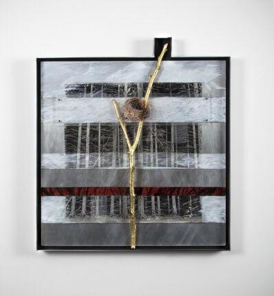 Ken Girardini, 'Golden Bough', 2014