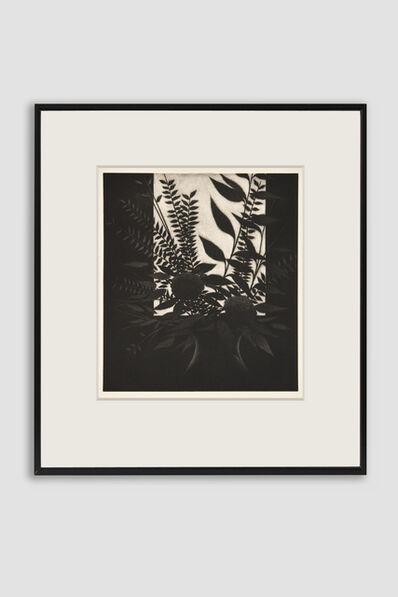 Robert Kipniss, 'Window with Flowers Mezzotint by Robert Kipniss', 1982