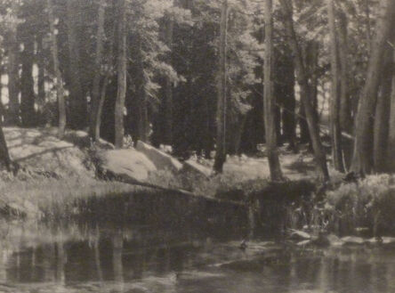 Ansel Adams, 'Lyell Fork Meadows', 1927
