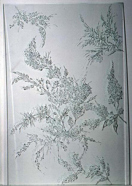 Olaf Nicolai, 'Naturstücke III', 1995/96