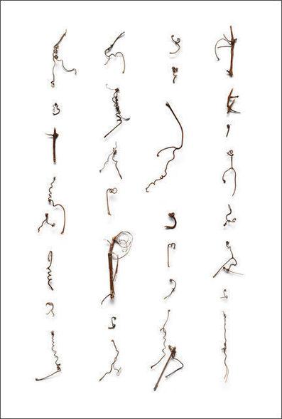 Cui Fei, 'Tracing the Origin V_001', 2007