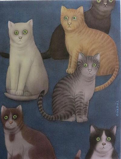 Gurbuz Dogan Eksioglu, 'Cats'