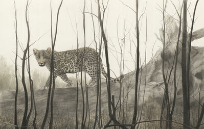 Qin Ai 秦艾, 'In the Woods ', 2014
