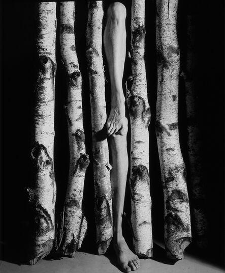Arno Rafael Minkkinen, 'Mattomies # 14, Museum of Fine Arts Boston ', 1983