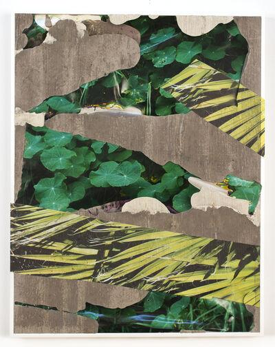 Letha Wilson, 'Hawaii Nevada Flora Concrete Bend', 2020