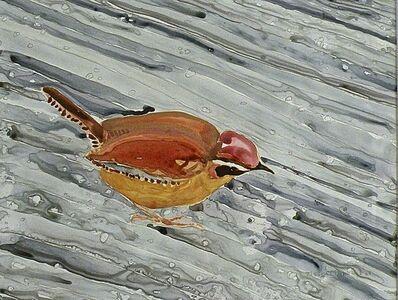 Eleanor Hubbard, 'Wet Wren', 2009