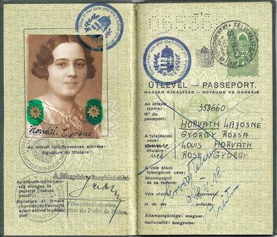 Soheila Sokhanvari, 'Hungarian Passport', 2010