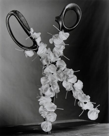 Robert Langham III, 'Wisteria Scissors', 2015