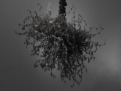 Petah Coyne, 'Untitled #1459 (Yōko Ogawa The Memory Police)', 2019