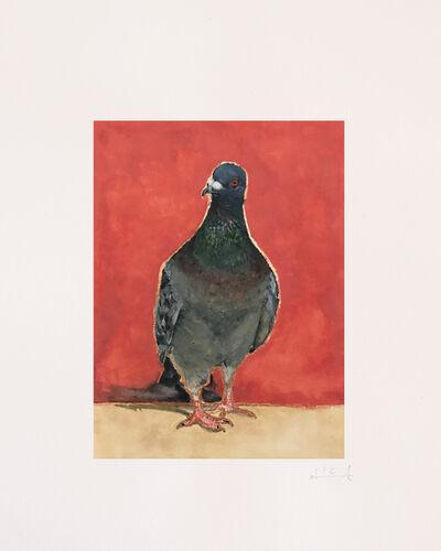 Calixte d'Annunzio, 'Pigeon I', 2019