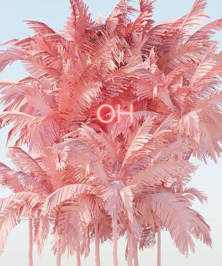 David Stenbeck, 'Flamingoh', 2020
