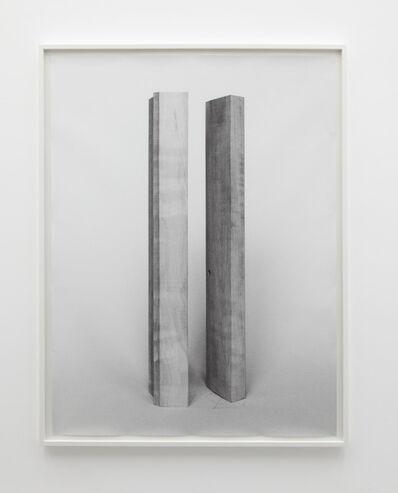 Becky Beasley, 'Elaborations (Extension No. 1)', 2013