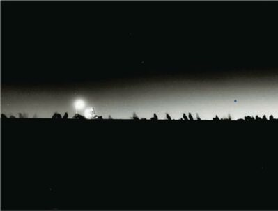 Philippe Parreno, 'Speaking to the penguins', 2013