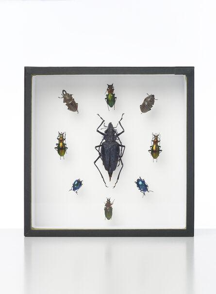 Damien Hirst, 'Nine Beetles', 2014