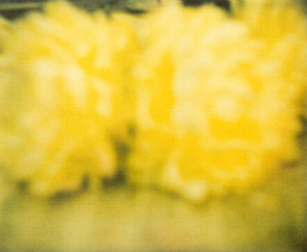 Cy Twombly, 'Flowers', 2009