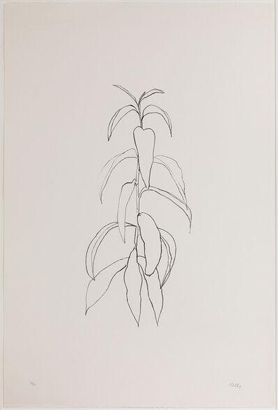 Ellsworth Kelly, 'Peach Branch', 1973-1974