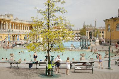 Fyodor Savintsev, 'Baths in Budapest', 2011