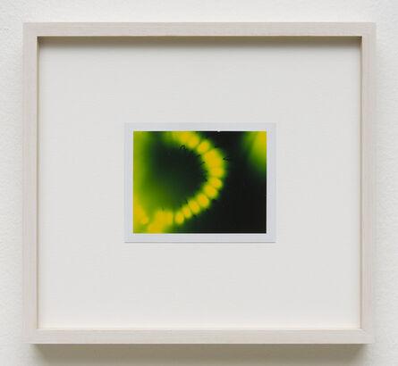 Peter Miller, 'Photuris #11', 2013
