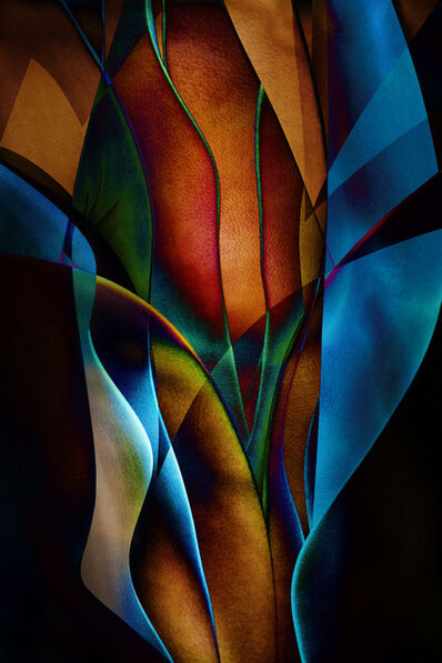 Ed Freeman, 'Plant Abstraction 14', 2017