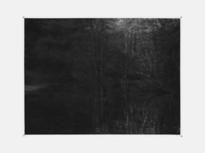 Renie Spoelstra, 'Reflected Forest in Pond', 2015
