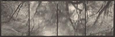 "Koichiro Kurita, '""Four Directions"" Connetquot River, NY', 1998"