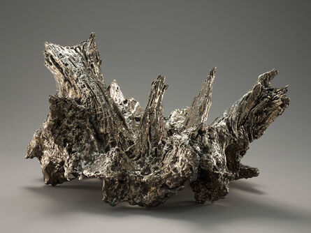 Michele Oka Doner, ''Goliathe's Crown'', 2009