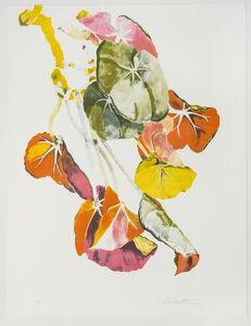 Sondra Freckelton, 'Begonia', 1976